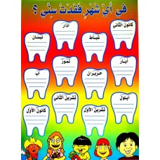 Classroom Poster:  The Month I lost my tooth (in Arabic) / لوحات تربوية : في أي شهر فقدت سني؟
